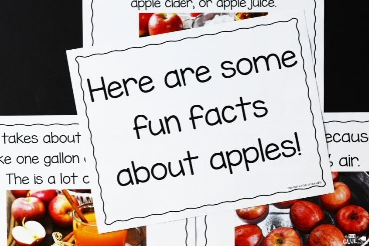 Fun facts all about apples