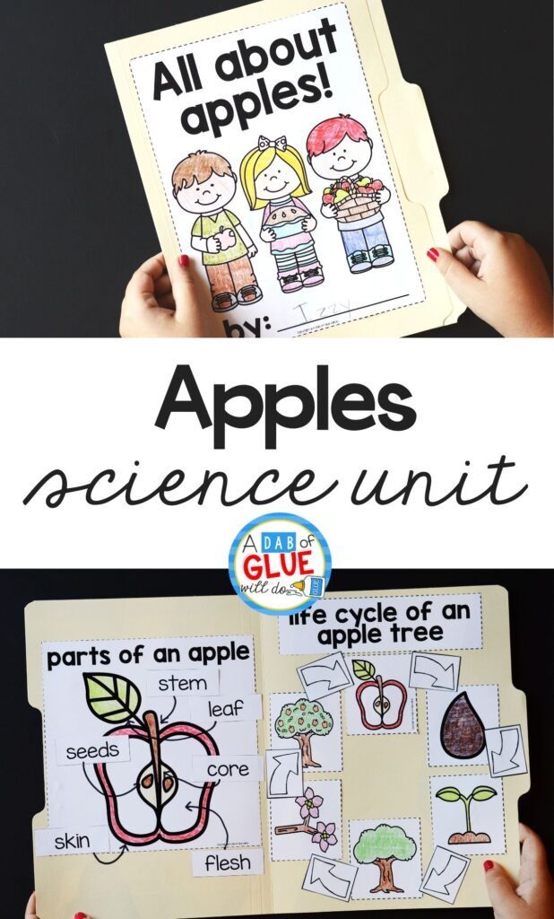 Apple Science Activities Unit is perfect for hands-on learning. Add this packed filled unit to your science and STEM centers.